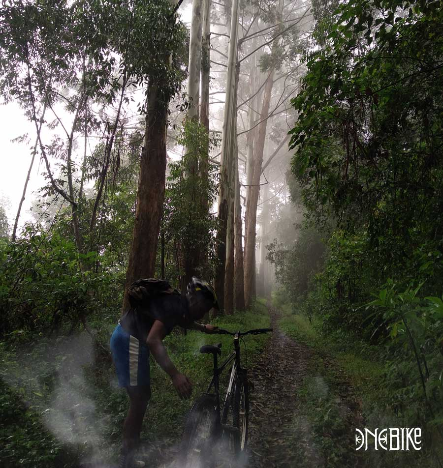 cycling tours in kilimanjaro tanzania